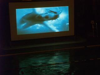 October 24 2009 Dive In Movie Brighton 39 S Prince Regent Flickr