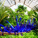 Chihuly at Franklin Park Conservatory 13