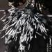BLACKBIRD GIRL OOAK custom Blythe japan doll by PICARA