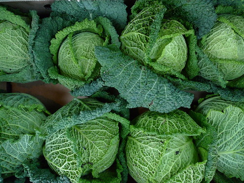 Savoy cabbage | by Nick Saltmarsh