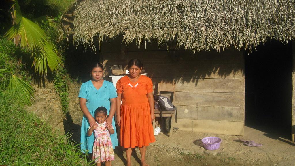 Mayan Village Homestay San Jose  Toledo  Belize