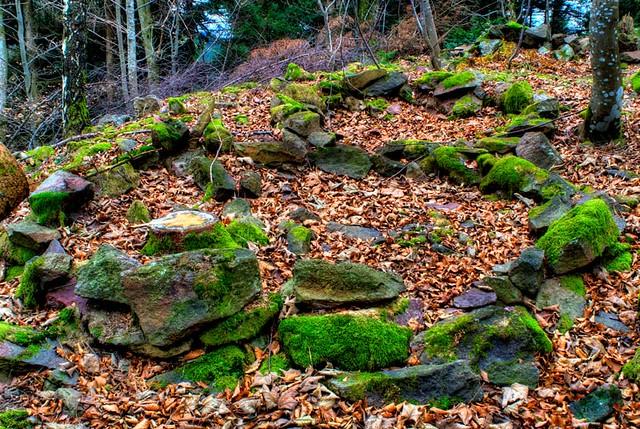 keltischer ringwall stockberg keltischer ringwall auf dem flickr