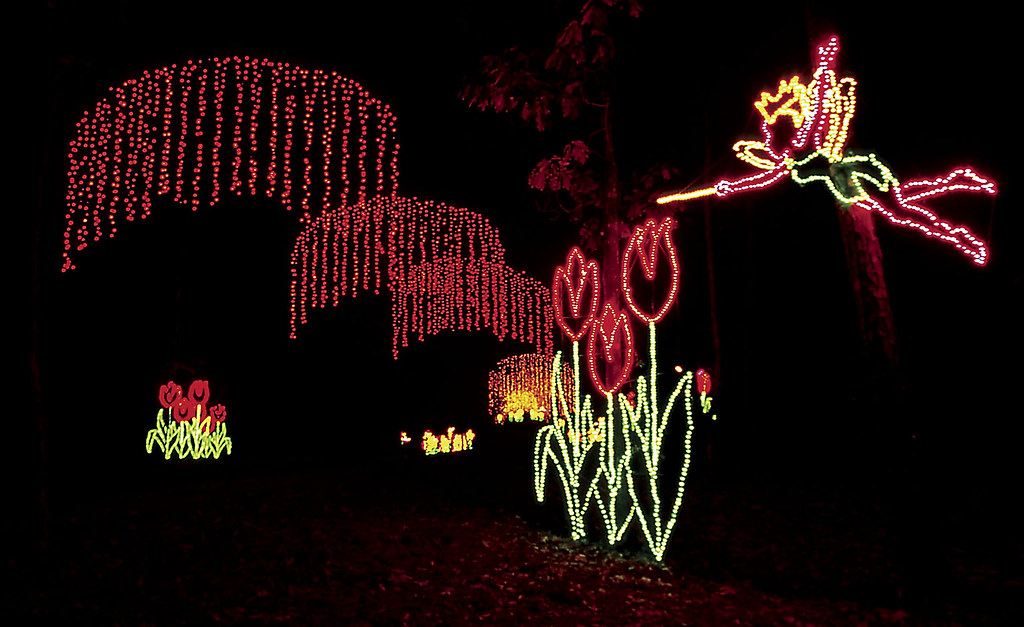 fantasy in lights enchanted rainbow forest by callaway gardens