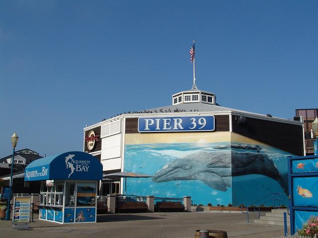 Pier 39 Aquarium Of The Bay Flickr Photo Sharing