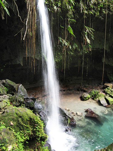 Emerald Pool - Dominica | by le papillon vert