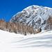 Vigna Vaga - Alta Val Sedornia