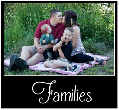 Families Portfolio Button
