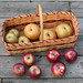 FruitShare_Week 12