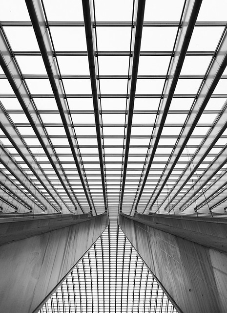 Line In Art And Design : A line study shot with the nikon af s this time