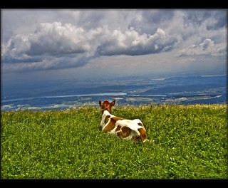 - Swiss summer-time . Chasseral July 9,2005-) Thank you dear ITALA!!! | by Izakigur