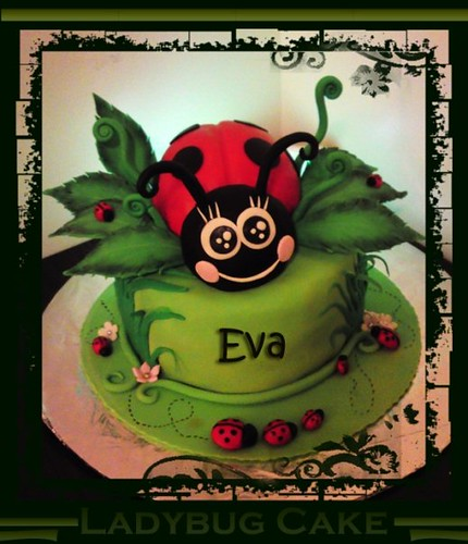 Ladybug cake my 2nd cake white cake with strawberry mousse