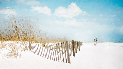 Happy Fence Friday: { ♥ Beach Couple ♥ } Edition! | by pixelmama