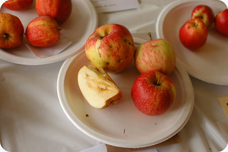 sometimes the best apples have worm holes | by shauna | glutenfreegirl