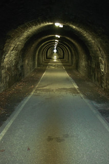 Innocent Railway Tunnel | by fraser.douglas