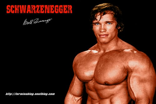 Mr. Olympia Arnold Schwarzenegger 1970-1975 | Peter Carwell | Flickr