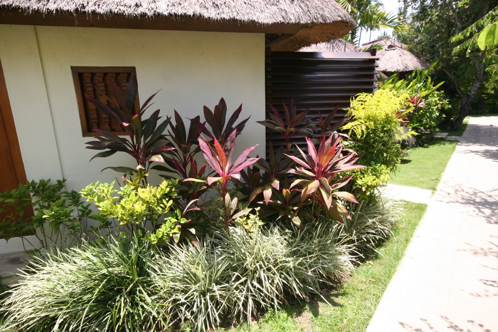 All sizes Tropical Garden Plant Bed Idea Flickr Photo Sharing
