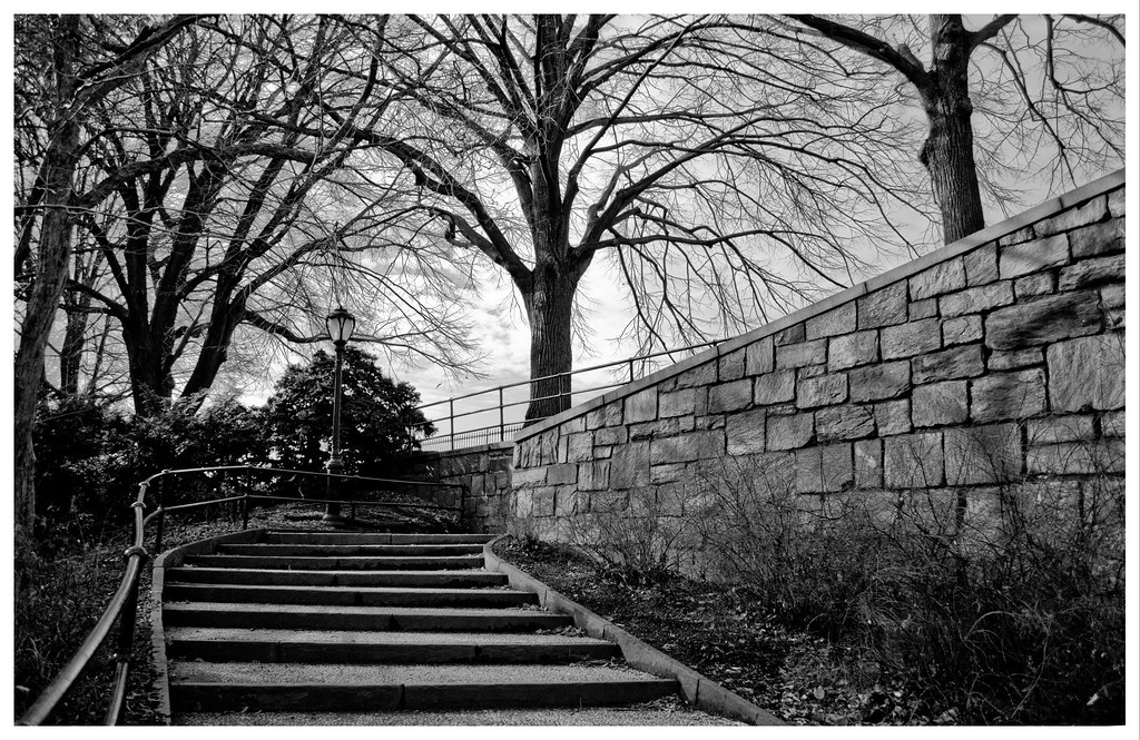 ... NYC: Central Park´s Stairs | By Javier Gutierrez Acedo