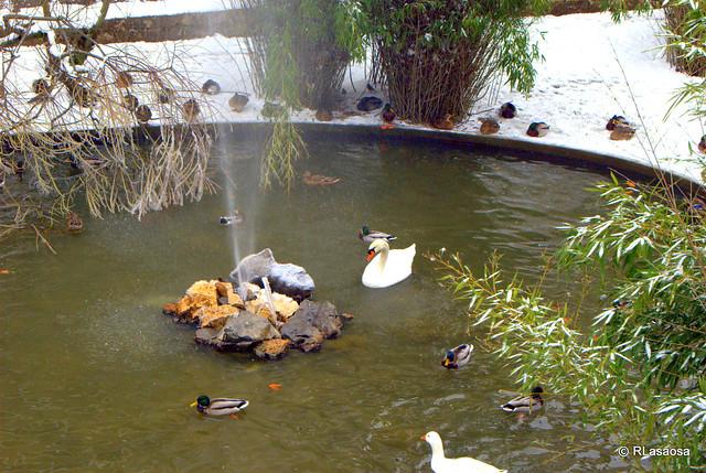 Parque de la taconera pamplona flickr photo sharing for Jardines de la taconera