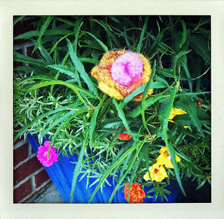 Yarn Bomb Felted Flower  in flower pot | by Free Your Spirit