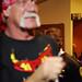Hulk Hogan #1