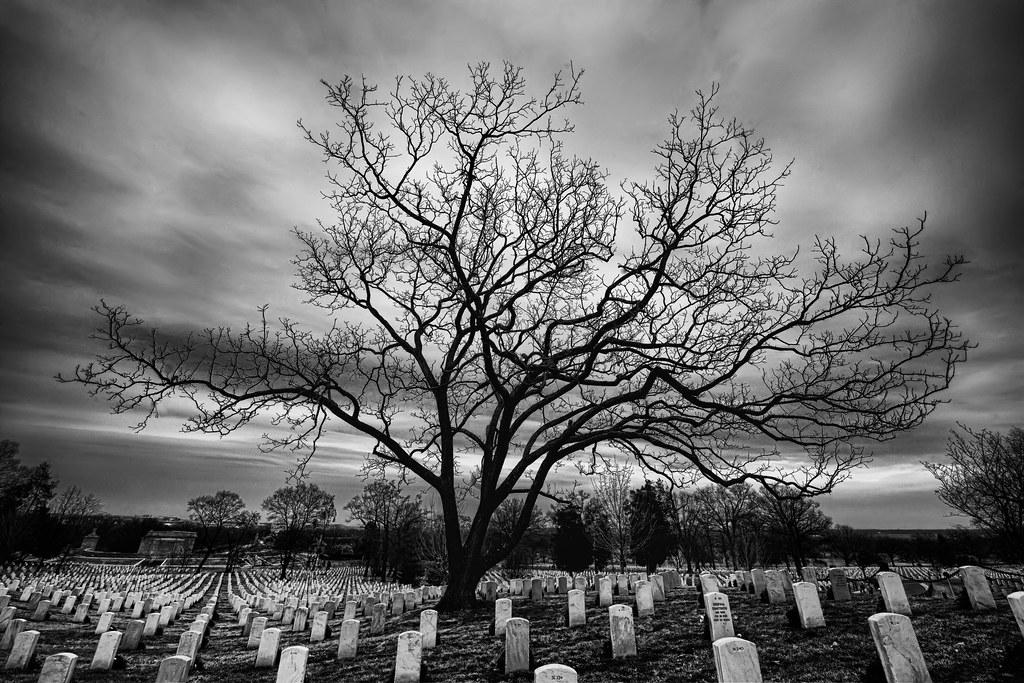 The Raised Bones of Arlington National Cemetery ...