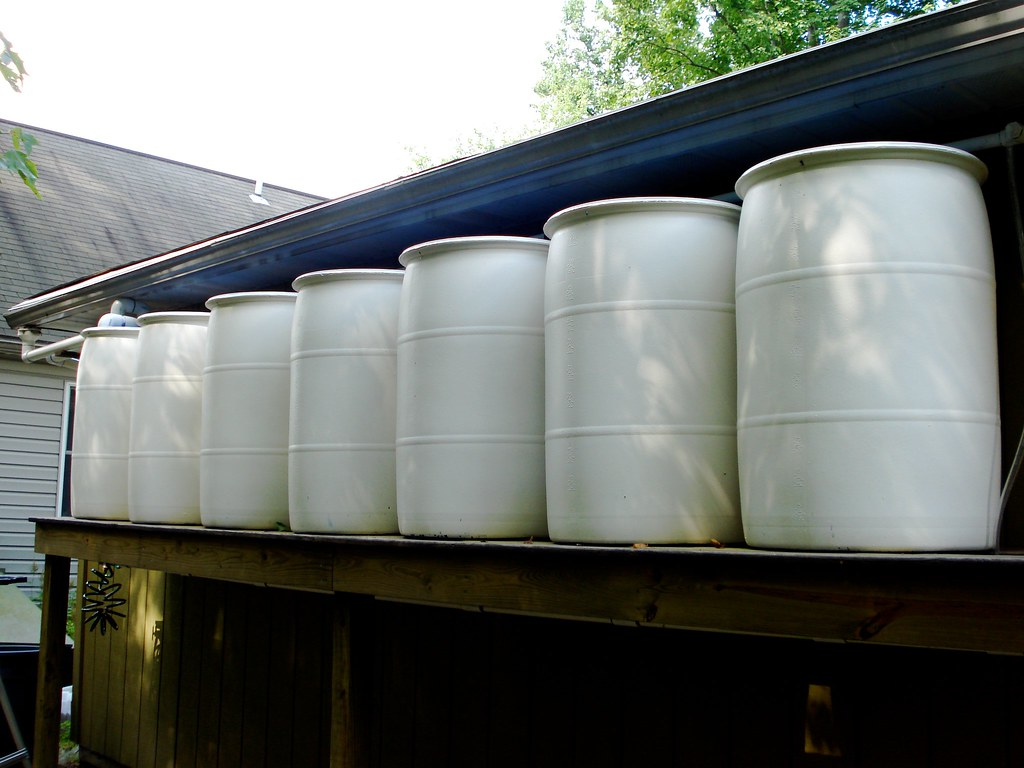 Rain Barrel System For Those Interested This Is Our