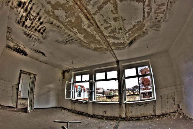 mietminderung wegen schimmel samyang 8mm fisheye marco lohrbach flickr. Black Bedroom Furniture Sets. Home Design Ideas