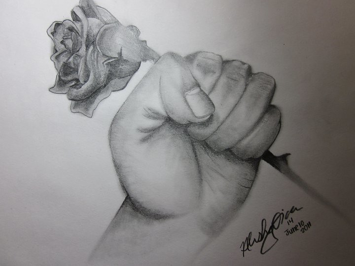 Hand Holding Rose Drawing Sianimal Flickr