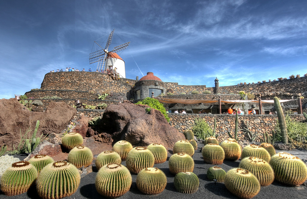 Jardin de cactus lanzarote just back from 4 days in for Jardin de cactus lanzarote
