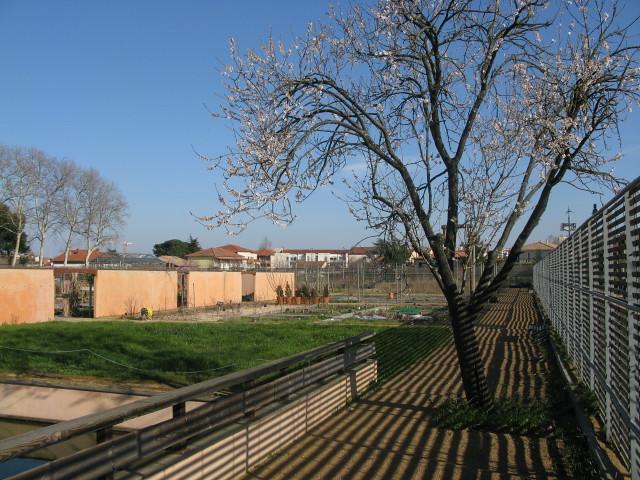 Jardins Du Mus Um De Toulouse Mars 2010 Les Jardins Se