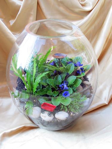 Nature S Miniature Miracles Site Pan Baidu Com