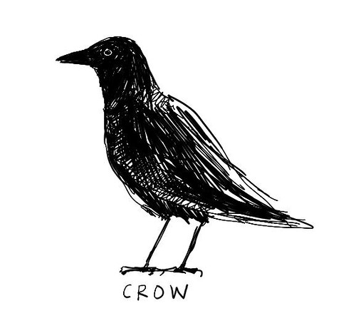 The crow: Nature's generalist | by dgray_xplane