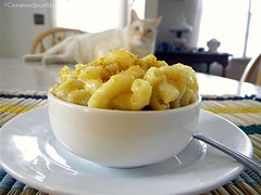 Moon's Macaroni & Cheese | by CinnamonKitchn