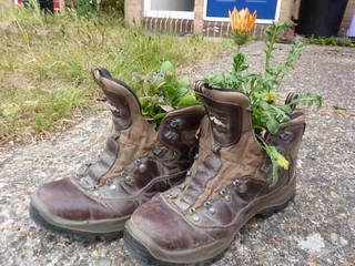 Hiking boot plant pots | by Bods