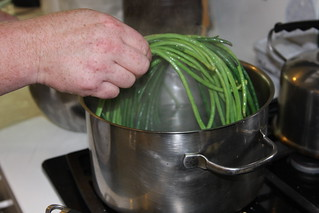 Asian Long Beans: Preparing to boil | by Indiana Public Media