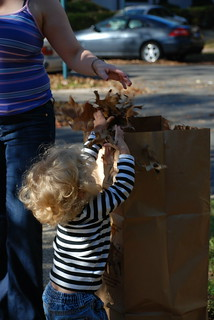 Bagging Leaves | by Joe Shlabotnik