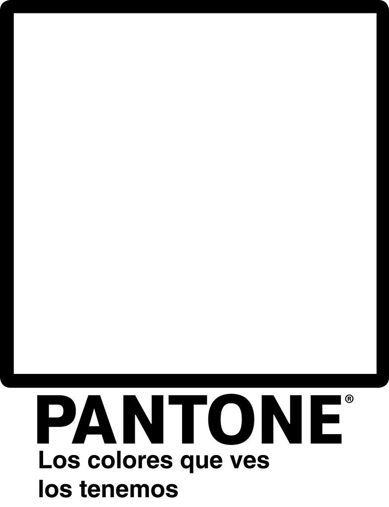 pantone  blanco y negro