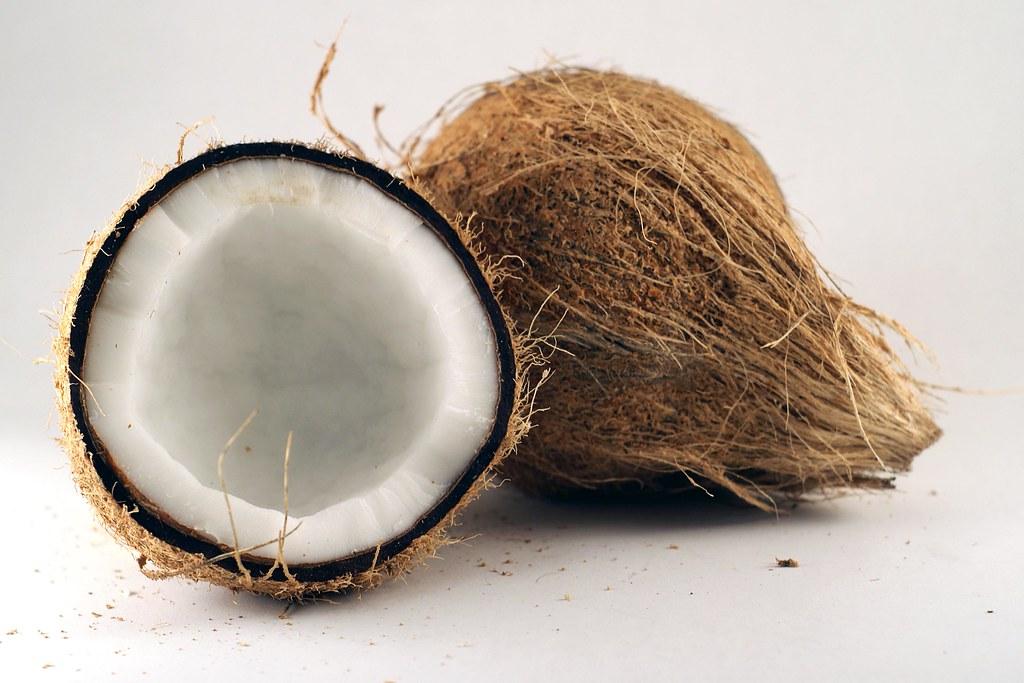 Risultati immagini per coconut