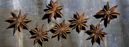 Star Anise Series | by geishaboy500