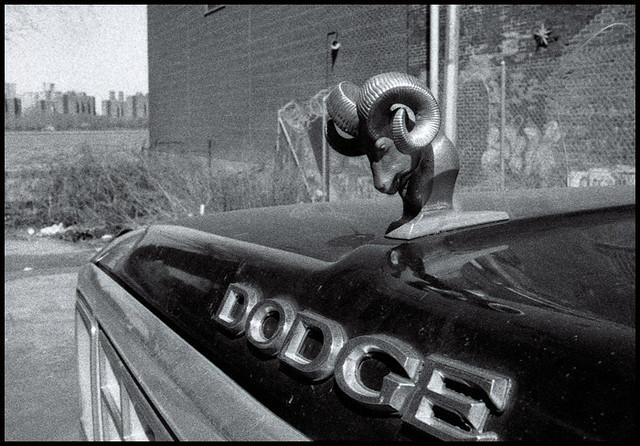 dodge gabbana belcebus car creo  creo en lo  creo   creo flickr