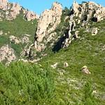 L'ancien chemin de Paliri par Bocca di Monte Bracciutu