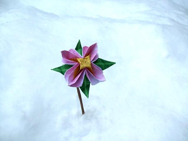 Advanced origami flower in the snow beautiful origami flow flickr advanced origami flower in the snow by joostlangeveld mightylinksfo
