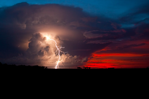10,000 Volt Sunset | by Indigothedog