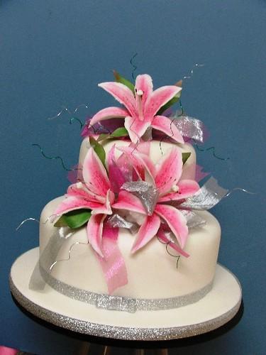 4074528630 ea5cdb99e8 Cake