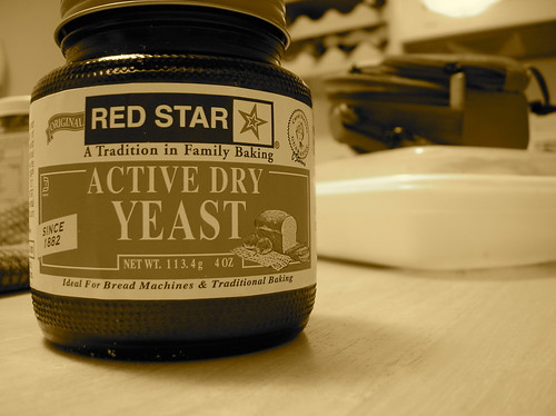 Yeast | by auntjojo
