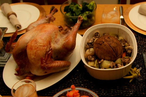 Turkey?  or Tofurky? | by Donna & Andrew