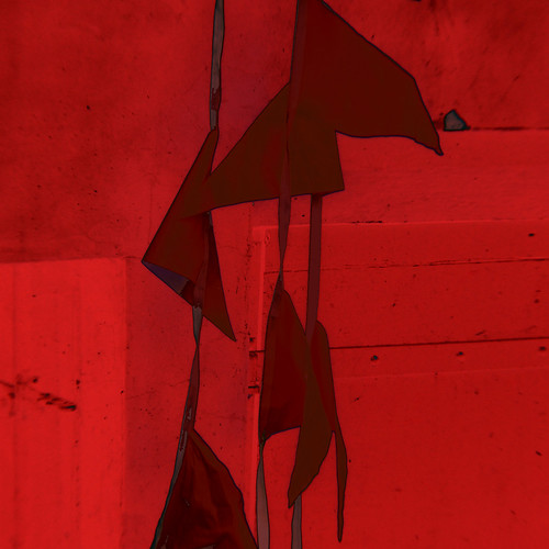 red . flags | by *tara