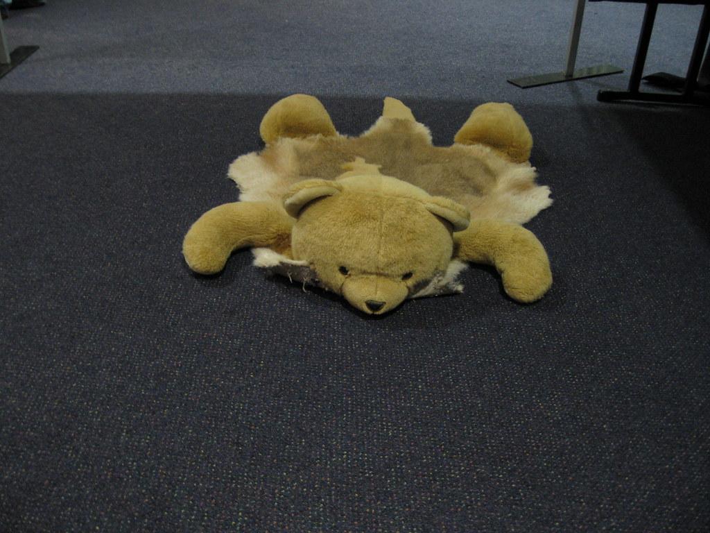 Teddy Bear Skin Rug Ariaflame Flickr
