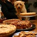 Penny looks at Pie