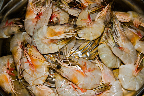 Jumbo Shrimp Oxymoron | The.Rohit | Flickr